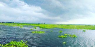 Arial Lake