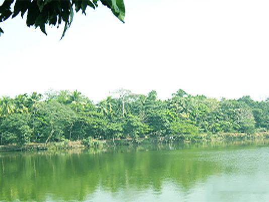 Dalal Bazar Khoa Sagor
