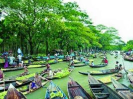 floating guava market